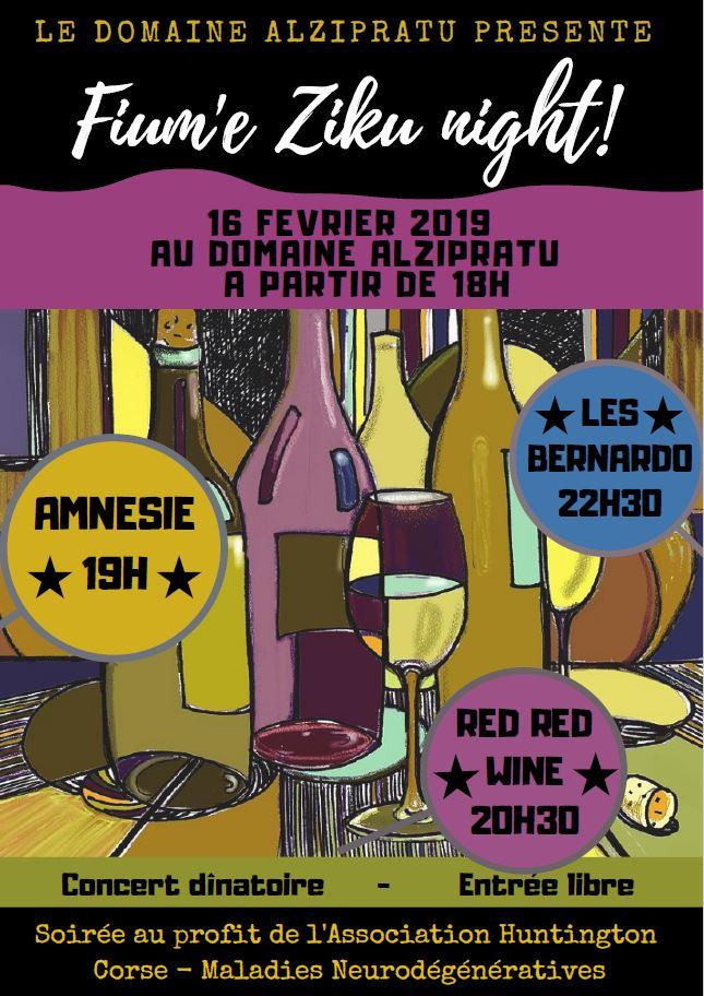 2019-02-16-domaine-alzipratu-soiree-pour-ahc-mn.jpg